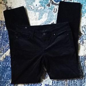 Ann Taylor velvet black pants
